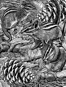 A page from the 'Woodcut Animals Coloring Book' for Dover Publications, 2016. Click on the image to see a larger version.